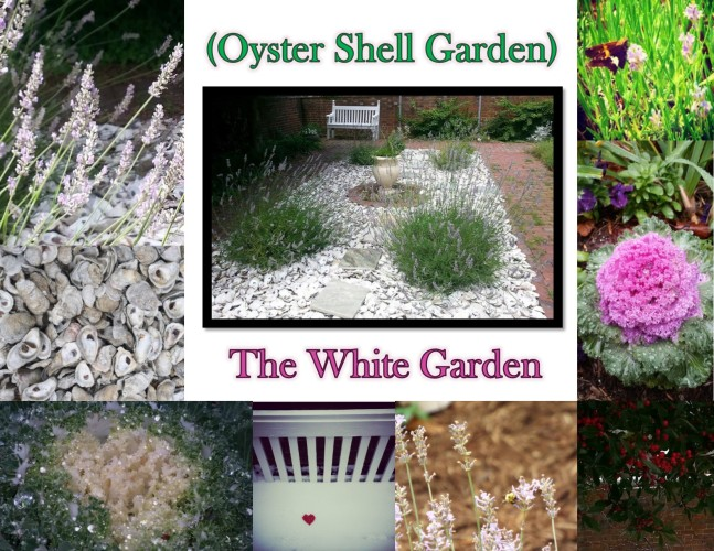 Garden Photos- Oyster Shell Garden